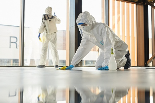 une agence de nettoyage de bureaux à Paris